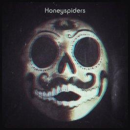 honeyspiders